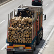Stock Photo: Trucks loaded with timber
