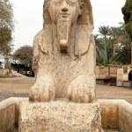 Egypt, memphis, — Stock Photo