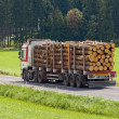Transport of logs on a truck — Foto Stock