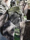 Grave stones at the jewish cemetery in prague — Zdjęcie stockowe