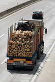 Trucks loaded with timber — Stock Photo