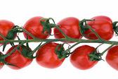 Tomaten, cocktail tomaten, cherry-tomaten — Stockfoto