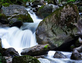 Stream in the mountains with water and stones — Stock Photo