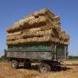 Straw harvesting — Stock Photo
