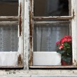 Stock Photo: Old wooden windows for renovation