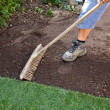 Turf is laid by gardener — Stock Photo #8318510