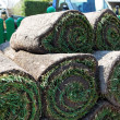 Foto Stock: Turf is laid by gardener