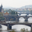 Bridges over the vltava river in prague — Stock Photo #8318578