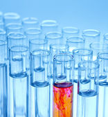Laboratory experiment in chemistry lab with glasse — Stock Photo