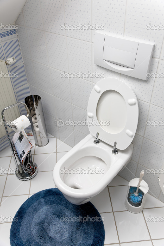 Toilet with an open toilet seat  Stock Photo #8315959