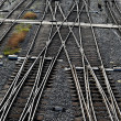 Stock Photo: Railroad tracks with switches