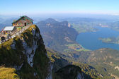 Austria, view of mountain sheep, mondsee — Stock Photo