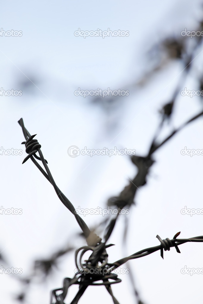 Barbed wire fence at a — Stock Photo #8326452