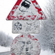 Verscheites signs skidding in winter — Stock Photo