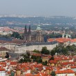 Prague, city view from petrin lookout tower — Stock Photo #8338790