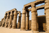 Egypt, luxor amun temple of luxor. — Stock Photo