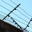 Barbed wire fence against blue sky — Stock Photo #8356056