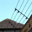Barbed wire fence against blue sky — Stock Photo