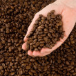Hand with coffee beans - Stock Photo