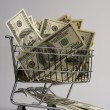 Stock Photo: Shopping basket with dollar bills