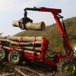 Loading wood with the truck crane - Stock Photo