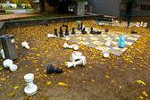 Garten in linz, oberösterreich im herbst — Stockfoto