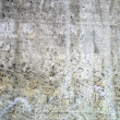 Concrete wall — Stock Photo #8418386
