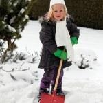 Snow shovel with snow shovel — Stock Photo #8626576