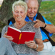 Stock Photo: Mature senior couple in love.