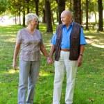 Mature senior couple in love. — Stock Photo #8626696