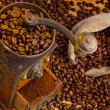 Of coffee. coffee beans and coffee grinder - Stockfoto