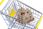 Carcass house in shopping cart — Stock Photo