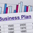 Business plan — Stock Photo #9285496