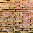 Photo: House brick wall