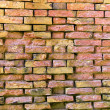 House brick wall — Stock Photo #9286104