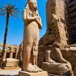 Egypt, luxor, karnak temple — Stock Photo