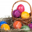 Easter eggs on a grass — Stok fotoğraf