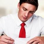 Business man working — Stock Photo #8891822