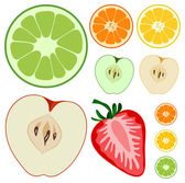 The fruits — Stock Vector