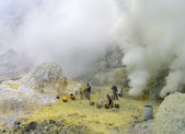 Unidentified miners harvests raw sulphur from the crater of Kawah Ijen — Stock Photo