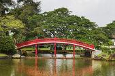 Japanese garden in Singapore — Stock Photo