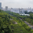 Stock Photo: A View of Singapore City