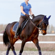 The horsewoman on a brown horse — Stock Photo