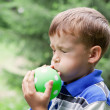 Boy inflates balloon in park — Stock Photo