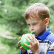 Boy inflates balloon in park — Stock Photo #9614103