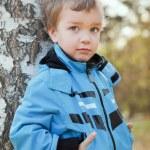 Portrait of boy in blue jacket around birch. — Stock Photo