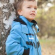 Portrait of dreamy boy about Birch, Fall, fleet — Stock Photo