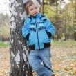 Boy in jacket and jeans, leaning against birch tree, autumn par — Stock Photo