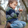 Little boy sitting on the tree stump, fall, park — Stock Photo #9614242