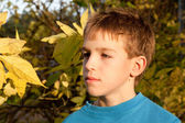 Portrait of serious boy in park, autumn — Stock Photo